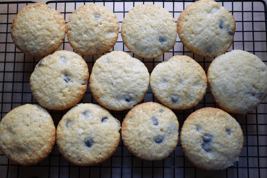 12 chocolate chip muffins cooling on a wire rack