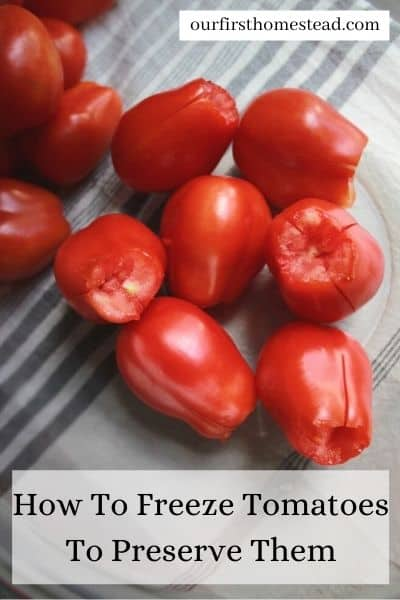 how to freeze tomatoes to preserve them