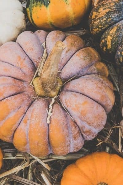 different colored pumpkins sitting on the ground with hay under them